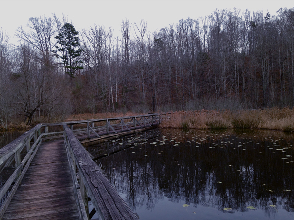 woodencrosswalkscf01-opt